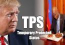 TPS : Jovenel Moïse écrit à Donald Trump, l'ADIH rencontre des élus américains.